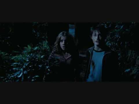 Harry Potter the Prisoner of Azkaban Harry Hermione part 2