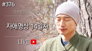 ☯ [실시간-명상방송] 자애명상✚수면명상 14일차▶귓전명상수련(376/426일) KoreaMeditation