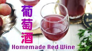 【Eng Sub】紅葡萄酒  家庭釀造天然發酵  Homemade Red Wine Recipe