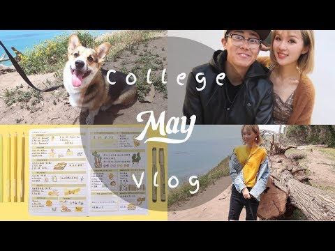 College Vlog Ep2| 聊聊如何度过低谷期| midterm week| uni回归啦!| 1000天纪念日