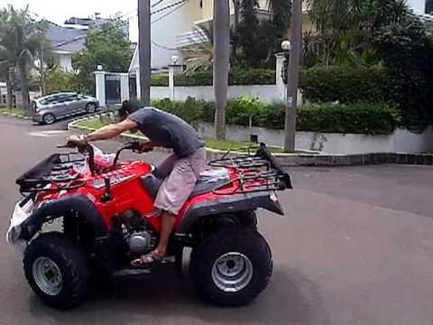 Pamer Kekuatan Atv 250cc Youtube