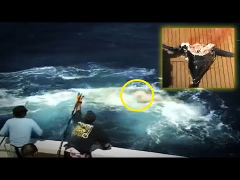 Thumbnail: 5 Shocking Fishing Moments Caught On Camera & Spotted In Real Life!