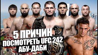 5 ПРИЧИН ПОСМОТРЕТЬ UFC 242 АБУ-ДАБИ: Хабиб Нурмагомедов, Дастин Порье, Махачев, Тухугов, Тайсумов.