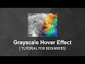 Grayscale Hover Effect - Tutorial For Beginners