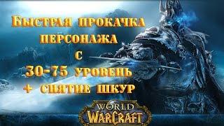Прокачка персонажа+снятие шкур в World of Warcraft
