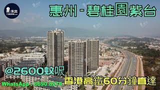 碧桂園紫台_惠州 @2600蚊呎 香港高鐵60分鐘直達 香港銀行按揭(實景航拍) 2021