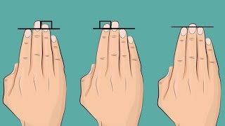 남들 보기에 매력적인 사람인지 아닌지, 당신의 손이 말해준다.
