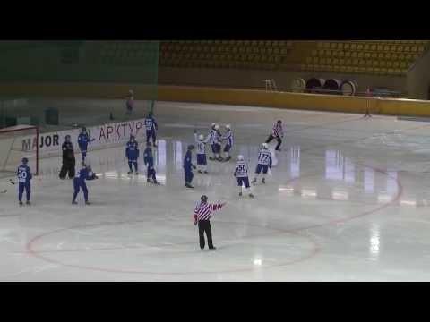 Хоккей с мячом. Чемпионат России 2013-2014 (5)