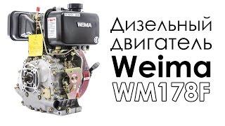 видео Дизельный двигатель Weima на мотоблок купить