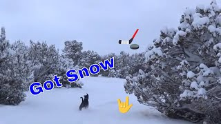 Snow in Arizona a Snowy Walk Around the Homestead