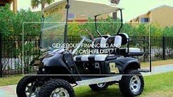 Golf Cart Business for Sale Jacksonville FL