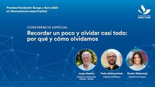 Premios Fundación Bunge y Born 2020 en Neurociencia Experimental