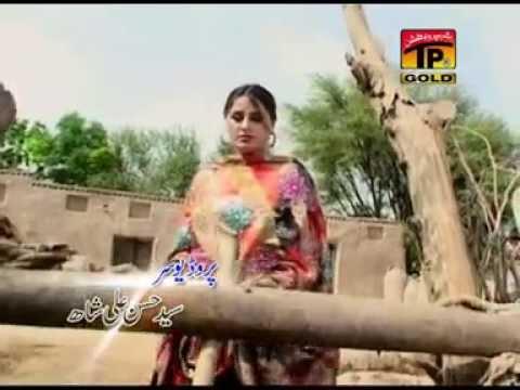 Mahiye Mahiye | Ameen Kumar Tedi | Badla Zarur Lounga | Album 1 | Songs