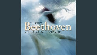 Symphony No. 5 In C Minor, Op. 67, I. Allegro con brio