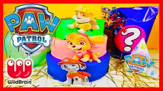 Learn Colors Paw Patrol Birthday Cake - Toy Surprises  Balloons