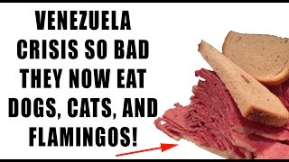 Venezuela Crisis So Bad They Eat Dog, Cat, Flamingo Amid MASSIVE FOOD SHORTAGE!