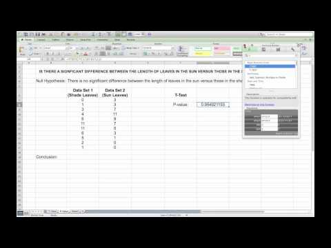 Carrying Out A T-Test In Microsoft Excel