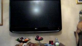 bose acoustimass 6 review any good.....