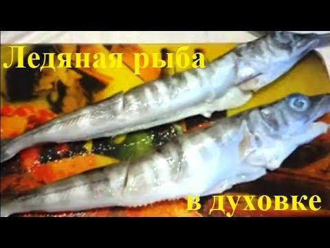 Вопрос: Ледяная рыба – это одна рыба или все семейство?