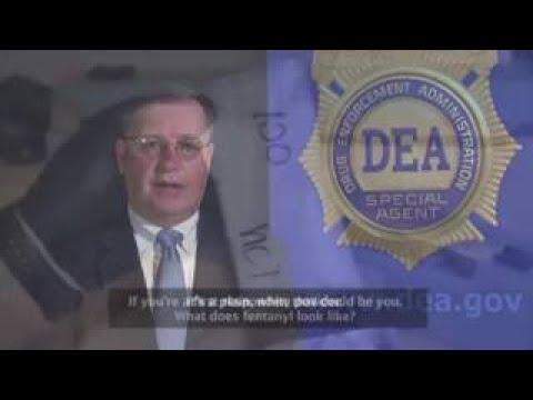 DML NEWS ALERT: DEA Puts Out Warning