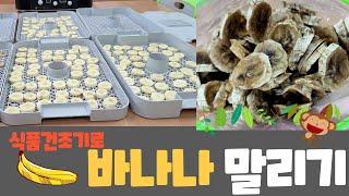 [수업기록] 식품건조기로 바나나 말리기 (feat.건바…