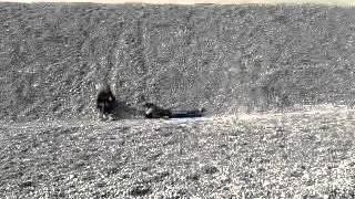 chute  dans les galets de la molliere d'aval par sylvain