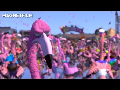 Flamingo Pride | A Short Film By Tomer Eshed