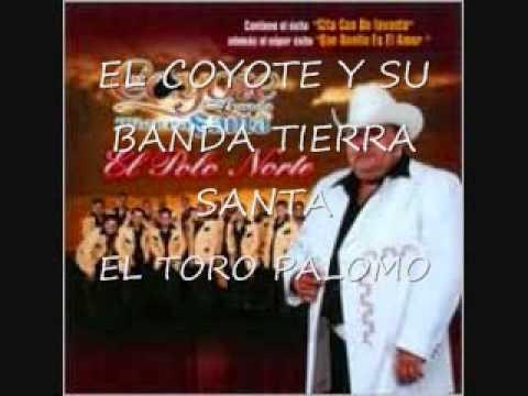 EL TORO PALOMO EL COYOTE Y SU BANDA TIERRA SANTA
