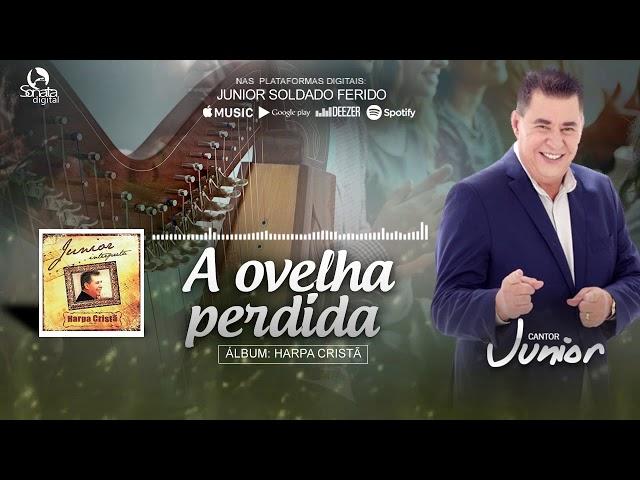 A OVELHA PERDIDA - (Harpa Cristã) Junior Soldado Ferido