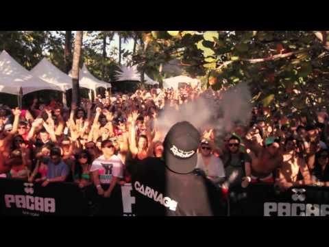Carnage - Ultra 2013 AFTERMOVIE