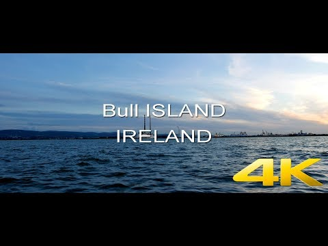 Video 4K footage of nature from Bull Island -  Ireland |  Green Pictures Media