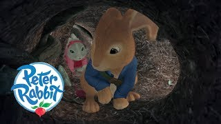 Peter Rabbit - The Labyrinth   Cartoons for Kids