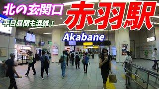 【東京北部ビッグターミナル駅】JR東北本線、赤羽駅構内を散策!(Japan Walking around Akabane Station)