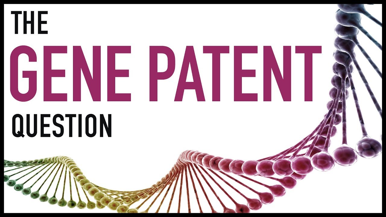 should genes be patented A second objection to patenting genes is that dna is a of particular genes to serve a certain function are patented rather than the genes themselves.