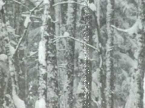 Hoyland - Lament in Winter