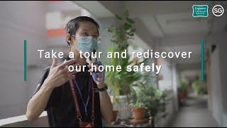 Explore a #SafeSingapore as tours resume