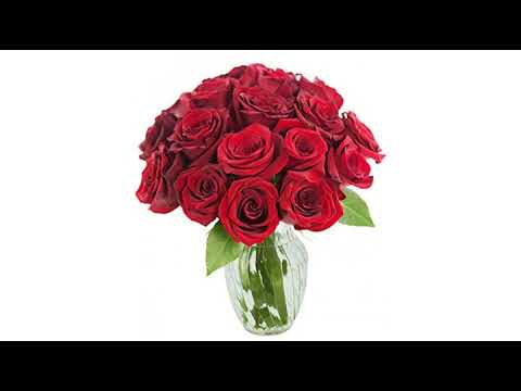 best-valentines-day-reviews!-kabloom-valentine's-day-collection:-bouquet-of-18-fresh-orange-roses..