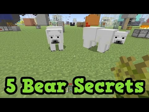 Minecraft Xbox - 5 Things You Didnt Know About Polar Bears