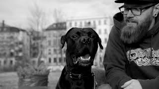 bÄyz - Hundesohn