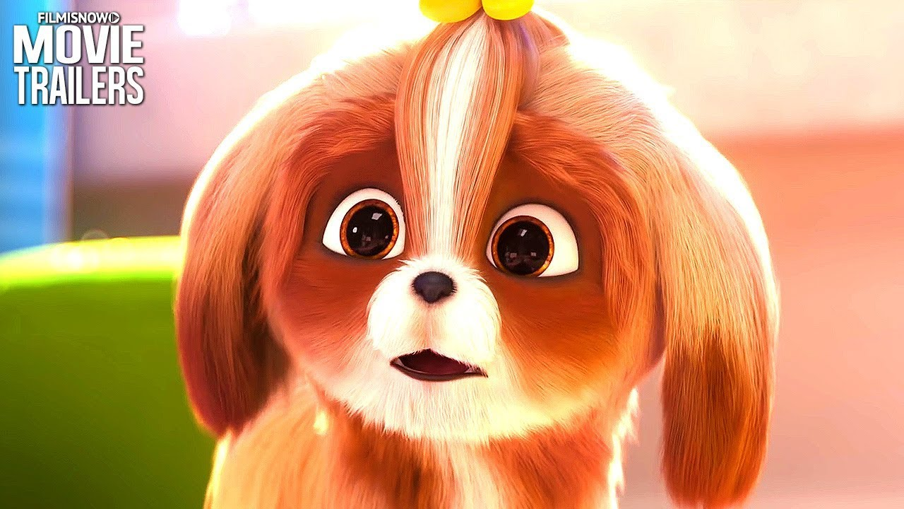The Secret Life Of Pets 2 Daisy Trailer New Animation 2019 Youtube