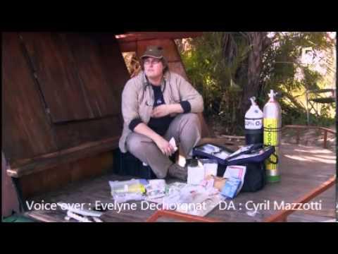 Vidéo France 5 - Documentaire Plongée avec les crocodiles