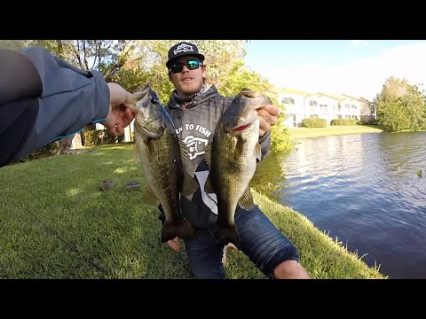 Peacock & Largemouth Fishing In West Palm Beach!! (FL5)