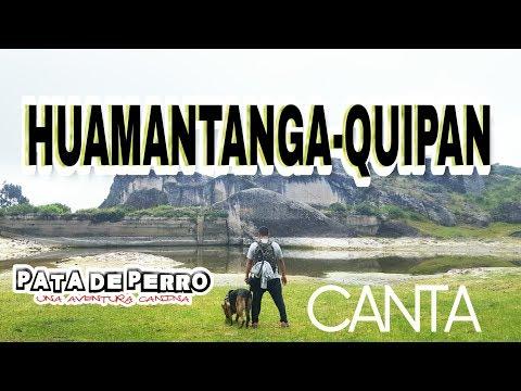 Huamantanga quipan- PATA DE PERRO una aventura canina