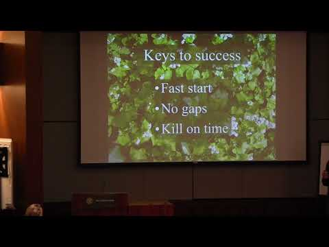 Cover Crops in Vegetable Production Systems thumbnail