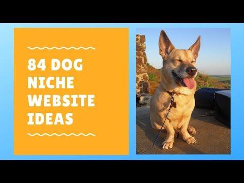 84 Dog Niche Website Ideas - YouTube