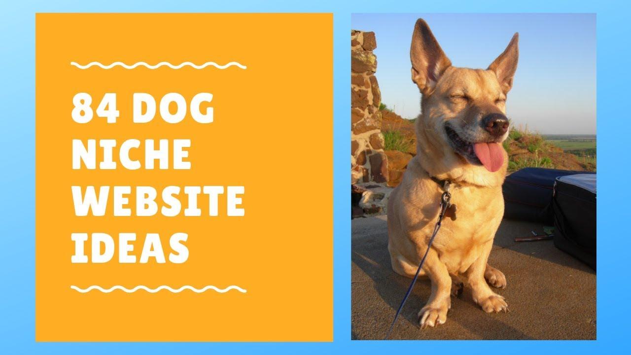 84 Dog Niche Website Ideas