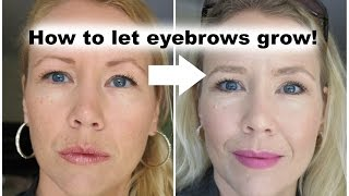 How to let eyebrows grow back!