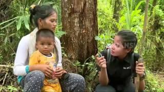 Gambar cover Perjalanan Menuju Desa Di Pegunungan Meratus (Indonesiaku) - part 1