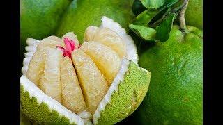 ПОМЕЛО - это фрукт МОЛОДОСТИ!
