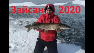 Хорошая рыбалка Озеро Зайсан Рыбалка в Казахстане 2020 год БОНУС в конце